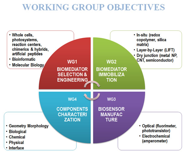 Working Group Objectives